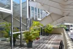 Terraza en piso 1 del HCC